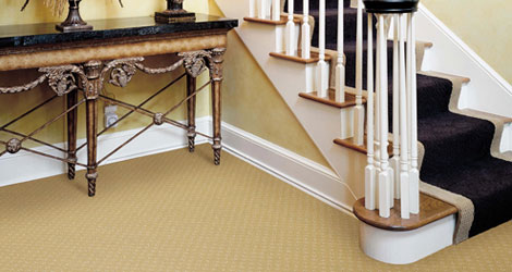 5 Things Which Can Ruin Your Carpet in No Time Explained by Professionals